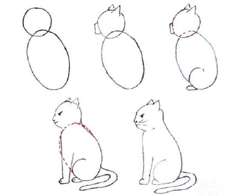 Рисунок кока как нарисовать