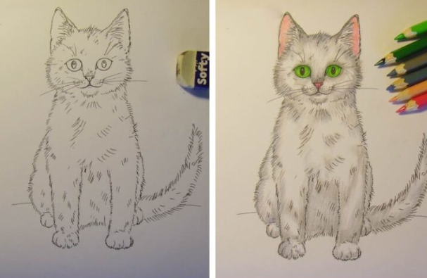 Как нарисовать кошку красиво
