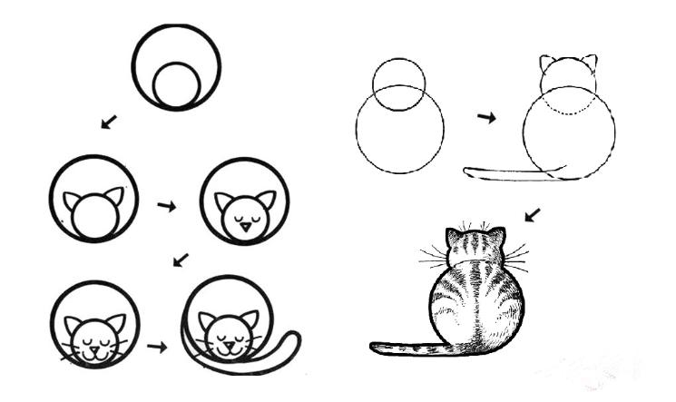 Как нарисовать кошку легко детям поэтапно карандашом. Рисунок кошка поэтапно ребенку. Как нарисовать спящую кошку, со спины. Кошка аниме.
