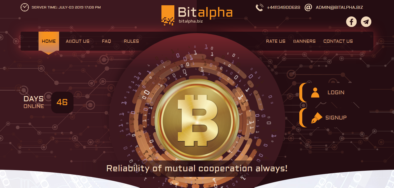 BitAlpha