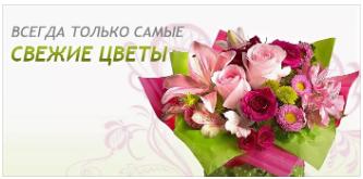 http://skrinshoter.ru/i/090819/mVCKSDWv.png