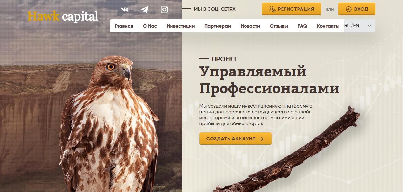 Hawk-capital